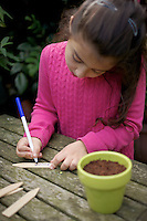 Young girl (seven year old) writing out a plant label for crocus