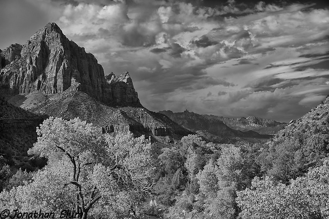 Zion Canyon Vista, Zion National Park