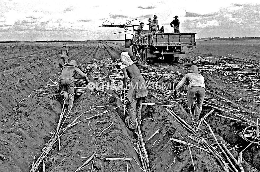 Trabalhadores boias-frias em Sertãozinho, São Paulo. Foto de Juca Martins. Data. 1980.