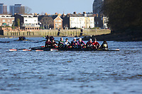 Crew: 114   Vesta / Twickenham / HSBC   MasD<br /> <br /> Quintin Head 2019<br /> <br /> To purchase this photo, or to see pricing information for Prints and Downloads, click the blue 'Add to Cart' button at the top-right of the page.