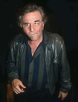 Peter Falk 1993<br /> Photo By John Barrett/PHOTOlink.net