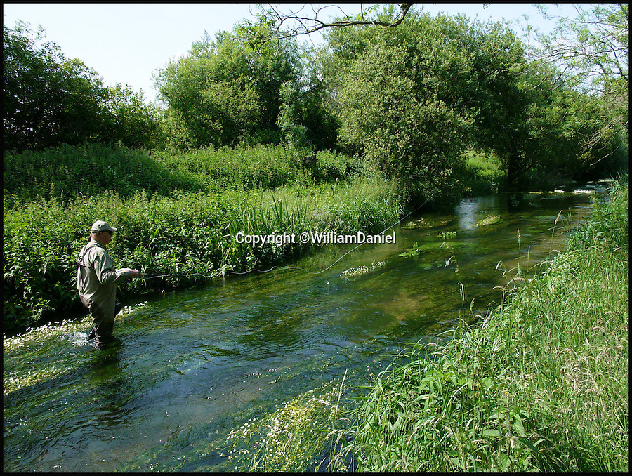 BNPS.co.uk (01202 558833)<br /> Pic: WilliamDaniel/BNPS<br /> <br /> Fishing on the River Lambourn.<br /> <br /> There was outrage today after environment bosses gave the green light for sewerage to be pumped into one of the most revered fly fishing rivers in Britain.<br /> <br /> The picturesque River Lambourn in Berkshire has long been a favourite among fishermen, treasured for its crystal clear waters that provide a home to large stocks of wild brown trout and the highly prized grayling.<br /> <br /> But campaigners say the 16-mile river and its inhabitants are now under threat after Environment Agency officials granted developers a permit to discharge effluence from a new luxury housing complex being built on its banks.<br /> <br /> It was thought that waste from the cluster of 10 plush homes at Weston, around seven miles north east of Newbury, would be routed into the main sewer network and stripped of any harmful phosphates.<br /> <br /> However developers Clean Slate said it would cost too much to do and instead proposed to discharge seven cubic metres of 'secondary treated sewage' - in which phosphates are still present - into the river each day.