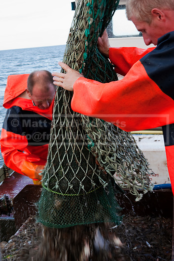 The bottom of one of the Sea Rover's two nets is opened to allow a catch of fish and shrimp to spill into the initial sorting box on the deck.