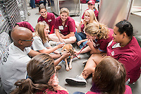 Mississippi State College of Veterinary Medicine students LaDarrius Battee of Shelby and Whitney James of Neely, wearing gray shirts on left, show veterinary medicine camp participants how to conduct a physical examination on a beagle. Now underway, the overnight camp at the university's Wise Center continues through Sunday [June 12].(photo by Tom Thompson / © Mississippi State University)