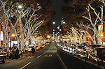 December 2, 2011, Tokyo, Japan - Christmas illuminations - hundreds of thousands of colorful light-emitting diodes - turn Tokyo night into the wonderful world of fantasy along the capital's Omote-Sando boulevard on Friday, December 2, 2011. (Photo byNatsuki Sakai/AFLO) [3615] -mis-