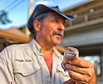 Sept. 9, 2012 - Merrick, New Sept. 9, 2012 - Merrick, New York, U.S. -  AZUL, the Blue Tongue Skink, a lizard, with JUNGLE BOB of Jungle Bob's Reptile World, draws children and their families at the 22nd Annual Merrick Festival on Long Island.