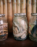PERU, Amazon Rainforest, South America, Latin America, close-up of snakes packed in jars at the Tambopata Research Center Lodge.