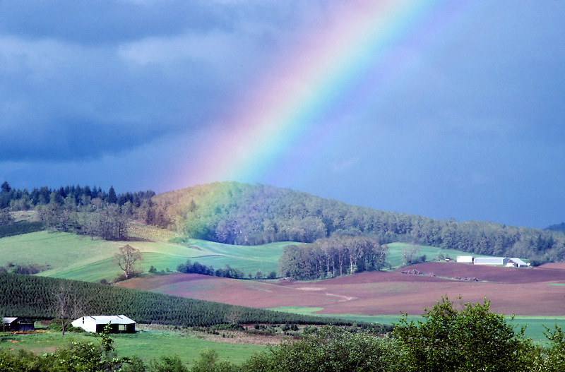 Rainbow over farmland. Near Monroe, Oregon.