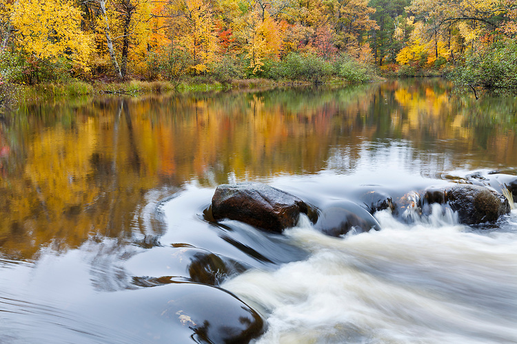 Morning light on fall color along the Manitowish River; Northern Highland-American Legion State Forest. WI
