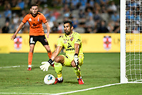 31st January 2020; Netstrata Jubilee Stadium, Sydney, New South Wales, Australia; A League Football, Sydney FC versus Brisbane Roar; Jamie Young of Brisbane Roar saves a goalbound shot with his feet