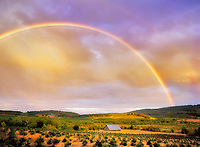 Barn with rainbow. Near Monroe, Oregon