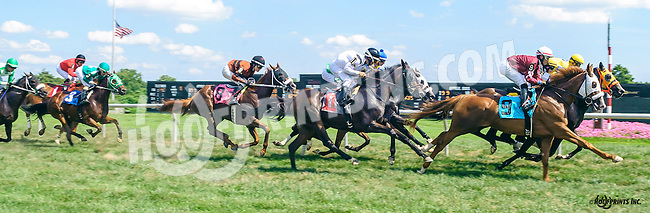 Fringe Benefits winning at Delaware Park on 8/15/16
