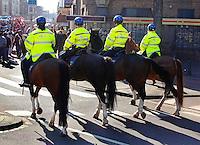 Politie te paard in Den Haag