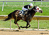 Love Undercover winning at Delaware Park on 8/27/14