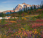 Mount Baker-Snoqualmie National Forest, WA: Huckleberries and mountain heather in a meadow at Picture Lake with afternoon sun on Mount Shuksan in fall