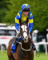 Midoura ridden by Liam Kenny goes down to the start  of The Molson Coors Handicap  during Evening Racing at Salisbury Racecourse on 11th June 2019