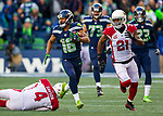 2017 NFL Seattle Seahawks vs. Arizona Cardinals
