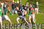 Ardfert v St Michaels Foilmore County League
