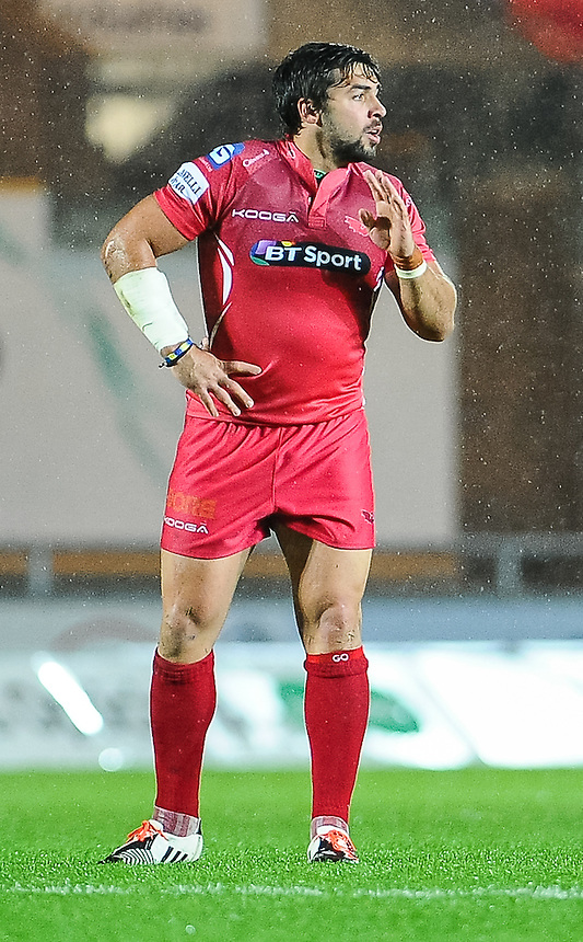 Scarlets' Gareth Owen in action during today's match <br /> <br /> Photographer Craig Thomas/CameraSport<br /> <br /> Rugby Union - Guinness PRO12 - Scarlets v Zebre - Saturday 1st November 2014 - Parc y Scarlets - Llanelli<br /> <br /> &copy; CameraSport - 43 Linden Ave. Countesthorpe. Leicester. England. LE8 5PG - Tel: +44 (0) 116 277 4147 - admin@camerasport.com - www.camerasport.com