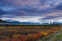 Alaska Pipeline crosses tundra along milepost 196 Dalton Highway with Brooks Range in Background.  Fall/Autumn<br /> <br /> Photo by Jeff Schultz/  (C) 2019  ALL RIGHTS RESERVED
