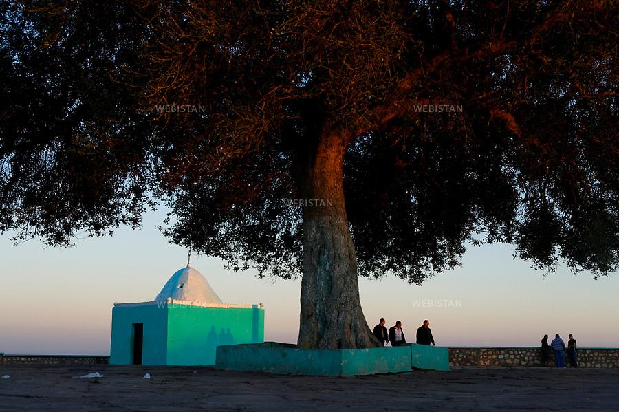 Algerie. Oran. 10 Avril 2011.<br /> Un arbre dominant la koubba du soufi Sidi Abdelkader Al Jilani.<br /> <br /> <br /> Algeria, Oran. April 10th 2011<br /> A tree dominates the mausoleum of Sufi Sidi Abdelkader Al Jilani.