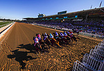 November 1, 2019: British Idiom, ridden by Javier Castellano, wins the Breeders' Cup Juvenile Fillies on Breeders' Cup World Championship Friday at Santa Anita Park on November 1, 2019: in Arcadia, California. Carlos Calo/Eclipse Sportswire/CSM