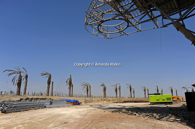 Dying palm trees are seen on site at the Khazar Islands project near Sahil, Azerbaijan on July 18, 2012.  The brainchild of Ibrahim Ibrahimov, an Azerbaijani oligarch and billionaire, the artificial Khazar Islands project just southwest of the Azerbaijani capital Baku is being built at a projected cost of $100 billion with an anticipated 800,000 housing units.