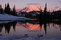 Mount Rainier reflecting in subalpine pond.  Mount Rainier National Park, July, sunrise.