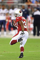 Aug. 22, 2009; Glendale, AZ, USA; Arizona Cardinals running back (36) LaRod Stephens-Howling against the San Diego Chargers during a preseason game at University of Phoenix Stadium. Mandatory Credit: Mark J. Rebilas-