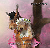 CHIARA,REALISTIC ANIMALS, REALISTISCHE TIERE, ANIMALES REALISTICOS, paintings+++++,USLGCHI703,#A#, EVERYDAY ,photos