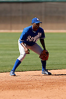 Irving Falu  - Kansas City Royals - 2009 spring training.Photo by:  Bill Mitchell/Four Seam Images