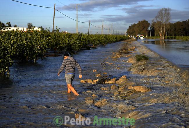 A man is seen in a field of orange in La Ina, near Jerez de la Frontera in Cadiz is pictured after it was closed on january 05, 2010 for the heavy rain. (c)Pedro ARMESTRE.