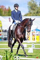 NZL-Nick Brooks rides For Fame during the CIC3* Eventing Dressage. 2018 NZL-Horse of the Year Show. Hastings. Friday 16 March. Copyright Photo: Libby Law Photography