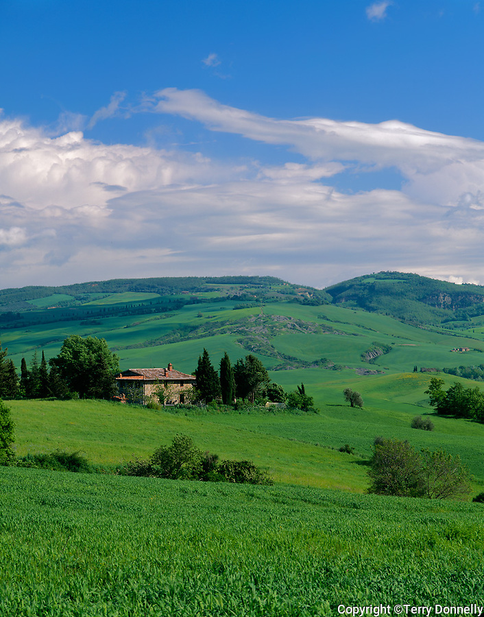 Tuscany, Italy:  Farmhouse (podero) set among the rolling green farms and fields of the Val d'Orcia at Contignano near Pienza