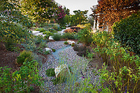 Rain garden with dry gravel percolation pond, Erskin garden Water conserving Southern California front yard garden; design Urban Water Group