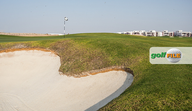 View of the 15th green at Al Zorah Golf Club, Dubai, United Arab Emirates.  26/01/2016. Picture: Golffile   David Lloyd<br /> <br /> All photos usage must carry mandatory copyright credit (&copy; Golffile   David Lloyd)