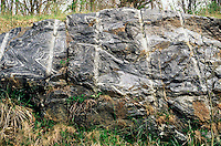 DRILL MARKS FROM DYNAMITE: ROADWAY CONSTRUCTION<br /> Metamorphic Rocks<br /> Pleasantville, NY