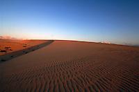 Sand dunes early morning, Corralejo, Fuerteventura, Canary Islands, Spain
