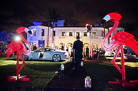 Flamingos and Fisker at 2013 Hearts & Stars Gala at Tierra Veritatis, Miami Beach, FL, March 9, 2013