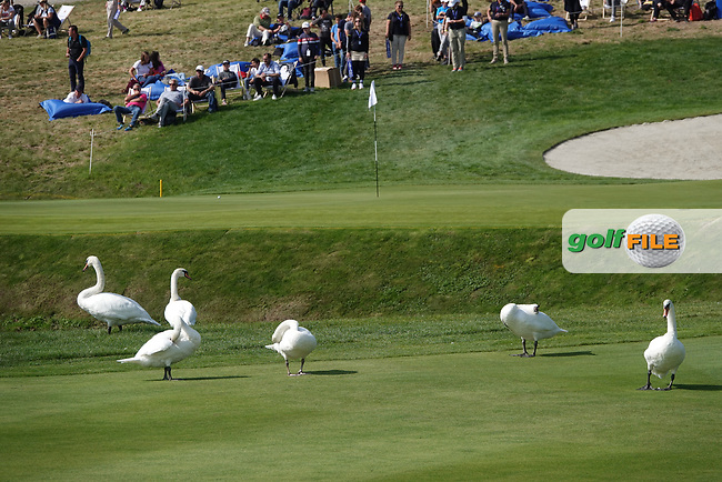 Swans on 18 during the final round of the Porsche European Open , Green Eagle Golf Club, Hamburg, Germany. 08/09/2019<br /> Picture: Golffile   Phil Inglis<br /> <br /> <br /> All photo usage must carry mandatory copyright credit (© Golffile   Phil Inglis)