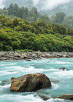 Cook River and rainforest near Fox Glacier, Westland Tai Poutini National Park, UNESCO World Heritage Area, West Coast, New Zealand, NZ