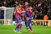 James McArthur Wilfried Zaha and Yohan Cabaye during the EPL - Premier League match between Crystal Palace and Liverpool at Selhurst Park, London, England on 29 October 2016. Photo by Steve McCarthy.
