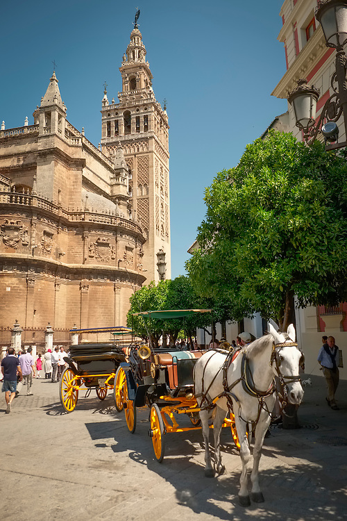 "Under the Giralda Bell Tower, horse drawn carriages await the ""tired feet"" world travelers."