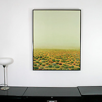 "Preston: Green Desert, Digital Print, Image Dims. 42"" x 33"", Framed Dims. 43.5"" x 35"""