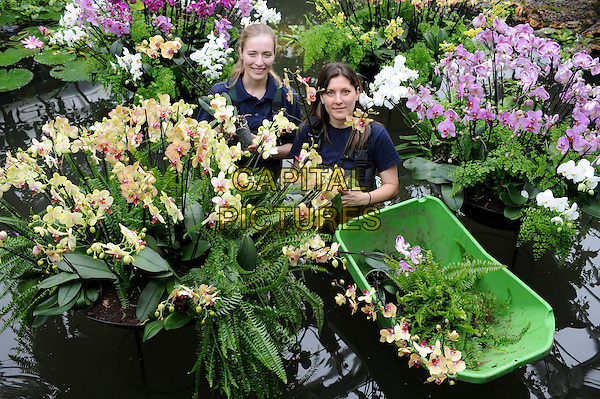 ANNE ROSTEK & TSUYEKO WESTERN,  Kew Diploma Students in horticulture.arranges an orchid in Kew Gardens' 'Tropical Extravaganza Festival 2011'  in London, England, UK, .February 3rd, 2011..half length garden gardening in water pond flowers plants holding wading dungarees .CAP/WIZ.© Wizard/Capital Pictures.