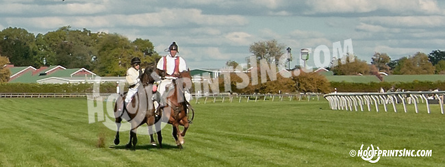 Upper Afleet being caught by Lance at Delaware Park on 9/28/13