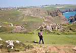 Woman walking near Kynance Cove, Lizard peninsula, Cornwall, England, UK