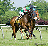 Recoupe winning at Delaware Park racetrack on 6/7/14