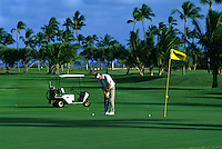 a golfer at the Waialae Country Club on Oahu, home of the Hawaiian Open