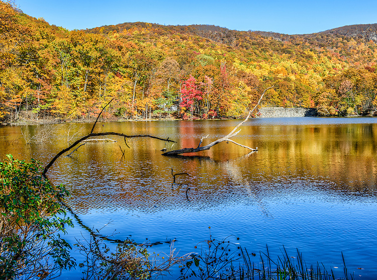 A reservoir in Cold Spring, NY, sporting autumn colors